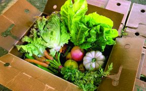 box of produce
