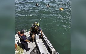 Divers search